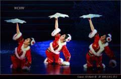 歌舞团在保利剧院演出的大型歌舞晚会《元首之夜》
